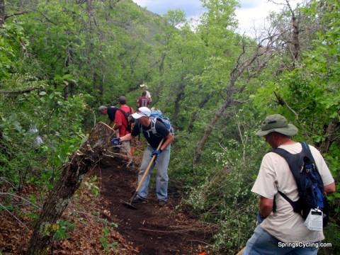 Medicine Wheel Trail Work